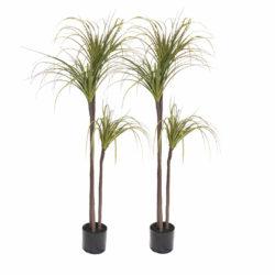 SOGA 2X 145cm Green Artificial Indoor Dragon Blood Tree Fake Plant Decorative