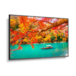 NEC Wide Color Gamut Ultra High Definition Professional Display